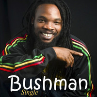 Bushman - This World
