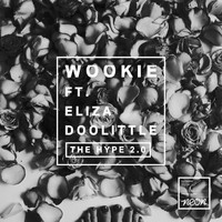 Wookie - The Hype 2.0 (Explicit)