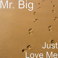 Mr. Big - Just Love Me