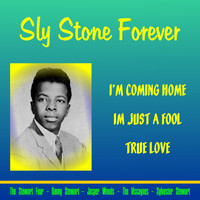 Sly Stone - Sly Stone Forever