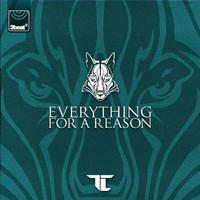 TC - Everything For A Reason
