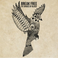 Paul Fox - Break Free