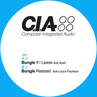 Bungle - If I Leave / Resized (G Dub Remix)