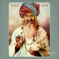DJ Koze - Reincarnations, Pt. 2 - The Remix Chapter 2009 - 2014