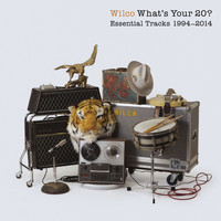 Wilco - What's Your 20? Essential Tracks 1994 - 2014