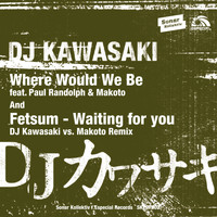 DJ Kawasaki - Where Would We Be feat. Paul Randolph