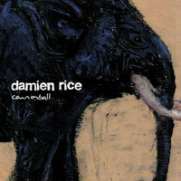 Damien Rice - Cannon Ball