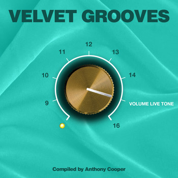 Various Artists - Velvet Grooves Volume Livetone!