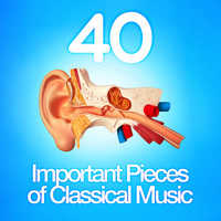 Giuseppe Verdi - 40 Important Pieces of Classical Music