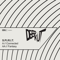 Spirit - Connected / Fantasy