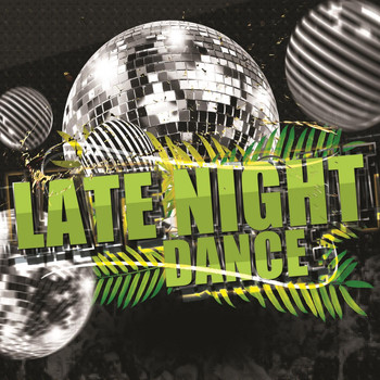 Various Artists - Late Night Dance