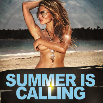 Various Artists - Summer Is Calling