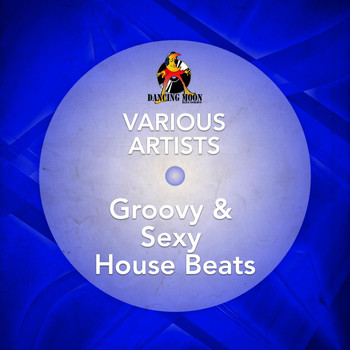 Various Artists - Groovy & Sexy House Beats