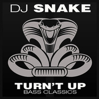 DJ Snake - Turn't Up