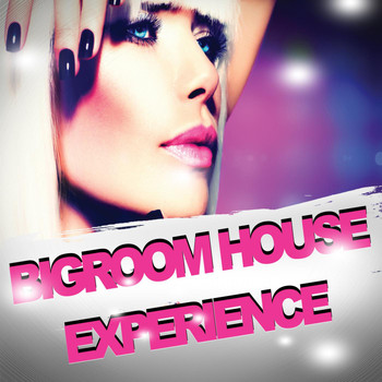 Various Artists - Bigroom House Experience