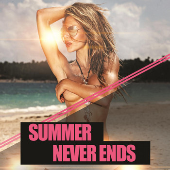 Various Artists - Summer Never Ends