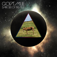 Gov't Mule - Dark Side of the Mule (Standard Edition)