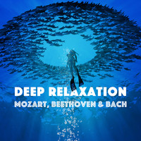 Wolfgang Amadeus Mozart - Deep Relaxation - Mozart, Beethoven & Bach