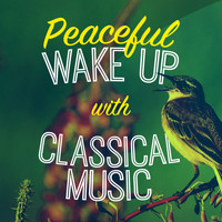 Robert Schumann - Peaceful Wake up with Classical Music