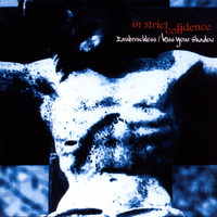 In Strict Confidence - Zauberschloss (Extended Version)
