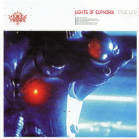 Lights of Euphoria - True Life