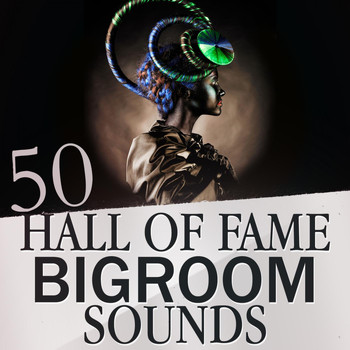 Various Artists - 50 Hall of Fame Bigroom Sounds