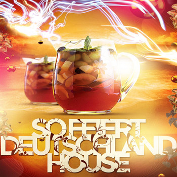 Various Artists - So Feiert Deutschland House