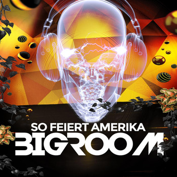 Various Artists - So Feiert Amerika Bigroom