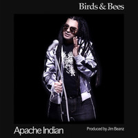Apache Indian - Birds and Bees