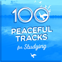 Manuel de Falla - 100 Peaceful Tracks for Studying