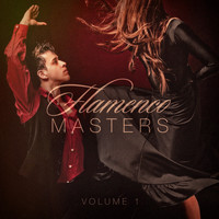 Flamenco Guitar Masters - Flamenco Masters, Vol. 1 (Pure Spanish and Flamenco Guitar)