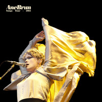 Ane Brun - Songs Tour 2013 (Live)