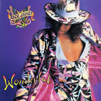 Rick James - Wonderful