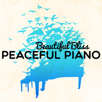Robert Schumann - Beautiful Bliss: Peaceful Piano