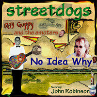 John Robinson - No Idea Why (feat. John Robinson & Ray Guppy and the Emoters)