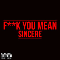 Sincere - Fuck You Mean