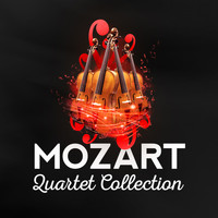 Fine Arts Quartet - Mozart: Quartet Collection