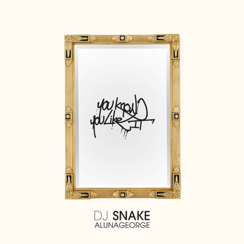DJ Snake / AlunaGeorge - You Know You Like It