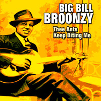 Big Bill Broonzy - Thee Ants Keep Biting Me