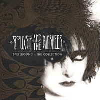 Siouxsie And The Banshees - Spellbound: The Collection