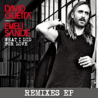 David Guetta - What I did for Love (feat. Emeli Sandé)