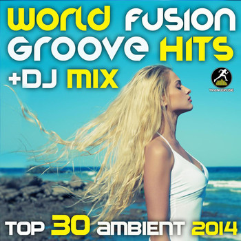 Various Artists - World Fusion Music Hits + DJ Mix Top 30 Ambient 2014