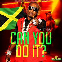 Elephant Man - Can You Do It - Single