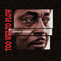 Johnny Shines - Worried Blues Ain't Bad