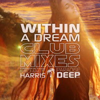 Michael Harris - Within A Dream