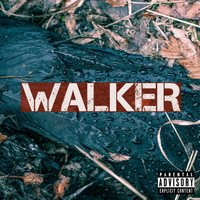 Walker - What Got You Through? - Single