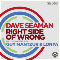 Dave Seaman - Right Side of Wrong