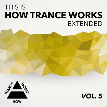 Various Artists - This Is How Trance Works Extended, Vol. 5