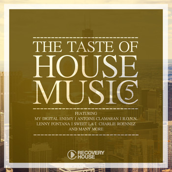 Various Artists - The Taste of House Music, Vol. 5