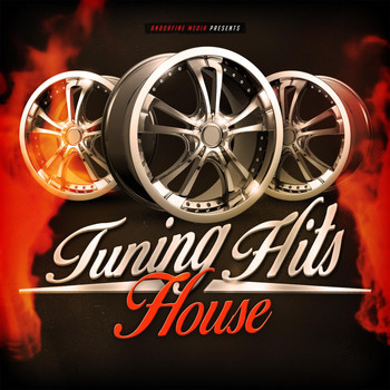 Various Artists - Tuning Hits House